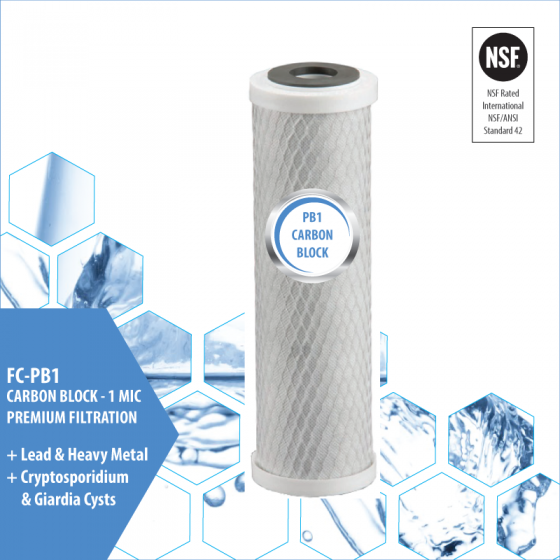 PB1 Carbon Block Filter Cartridge
